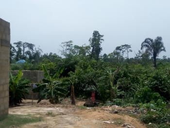 Well Located 4 Plots of Dry Land, Off Uzuoba Junction , Rumuokwachi, Uzuoba, Port Harcourt, Rivers, Mixed-use Land for Sale