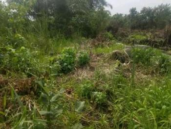 Farm Land Suitable for Cash Crops Available in a Serene Area., Mowo Kekere, Isawo, Ikorodu, Lagos, Mixed-use Land for Rent