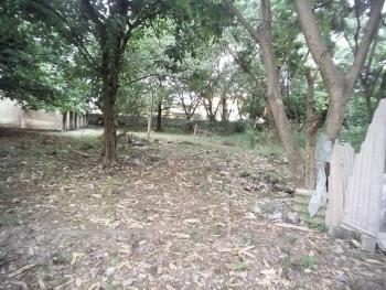 5 Plots (3,000 Square Metres) of Bare Land, Park Lane /hall Lane, Gra, Apapa, Lagos, Mixed-use Land for Sale