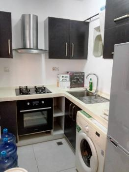 Tastefully Finished Furnished 1bedroom Apartment Ensuite and Serviced, Osapa London, Osapa, Lekki, Lagos, Mini Flat for Rent