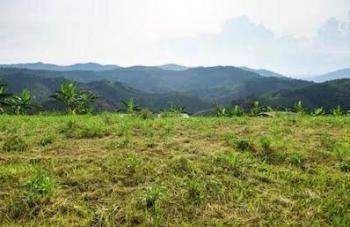 2800sqm Land, Banana Island, Ikoyi, Lagos, Residential Land for Sale