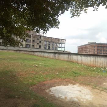 Fenced 7400sqm Commercial Land with C of O, Ibb Way, Maitama District, Abuja, Commercial Land for Sale