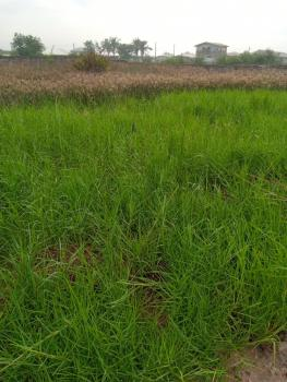 Bare Land, Orile Coker Estate Along Lagos Badagry Expressway, Orile, Lagos, Commercial Land for Sale