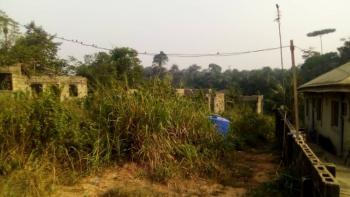 Well Located and Cheap Land, Ikorodu, Lagos, Mixed-use Land for Sale