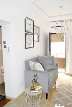 Brand New 1 Bedroom Apartment in a Choice Location, Pheonix Apartments, , Randle Lawanson, Aguda, Surulere, Lagos, Mini Flat for Sale