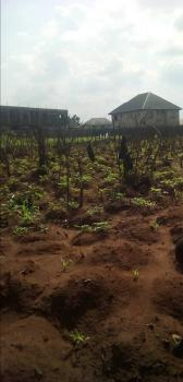 1008sqm Plot of Land, Opposite Ibc Layout, Orji, Owerri, Imo, Residential Land for Sale