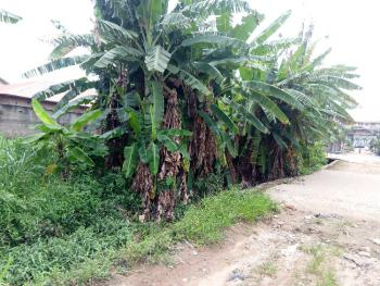 Prime 630m2 Corner Piece Plot with C of O, Frederick Nwosu Str By Austin Ozubo, Gra, Ogudu, Lagos, Residential Land for Sale