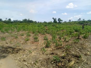 Unique Land, Zone a, Banana Island, Ikoyi, Lagos, Residential Land for Sale