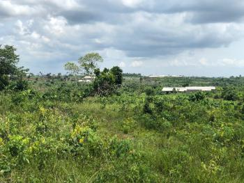 Affordable Lands, Edge Garden, Off Atlantic Hall School Road, Epe, Lagos, Land for Sale