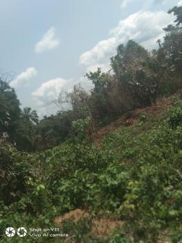 Deborah Joop -arable Farmland, Prime Farm Estate, Odeda, Ogun, Mixed-use Land for Sale