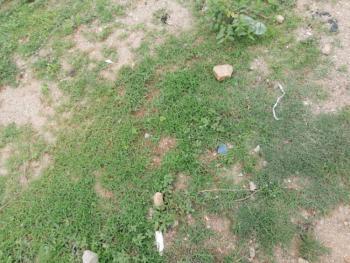 1146 Sqm Residential Land, Katampe (main), Katampe, Abuja, Residential Land for Sale