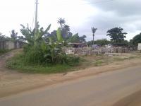 12 Plots of Land, Directly on Eneka/rukpokwu Road, Rukpokwu, Port Harcourt, Rivers, Industrial Land for Sale