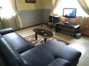Two (2) Bedroom Fully Furnished and Serviced Apartment, Onireke, Mokola Axis, Ibadan, Oyo, Flat for Rent