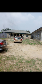 Completed 2 Units of Two Bedroom Flat on a Plot of Land, Asolo, Agric, Ikorodu, Lagos, Detached Bungalow for Sale