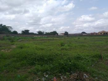 14.77 Hectares Land (commercial Plot), Airport Road, Centenary City, Kyami, Abuja, Commercial Land for Sale