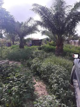 Full Plot of Land, Papa Area Inside Seaside Estate, Badore, Ajah, Lagos, Mixed-use Land for Sale