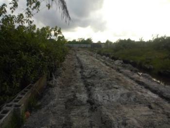 150 Acres of Land, Alatise, Ibeju Lekki, Lagos, Residential Land Joint Venture