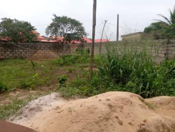 Half Plot of Land, Ijaiye, Lagos, Mixed-use Land for Sale