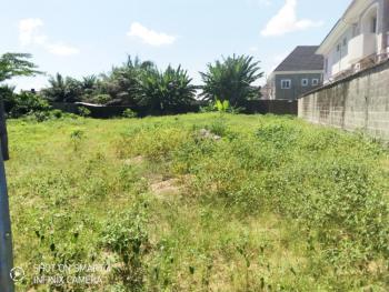 Plots of Land Measuring 500sqm, Lekki-penisulla Scheme 2, Opposite Abraham Adesanya Estate, Ajiwe, Ajah, Lagos, Mixed-use Land for Sale