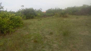 Registered Survey, Simawa at The Back of Redemption Camp, Simawa, Ogun, Residential Land for Sale