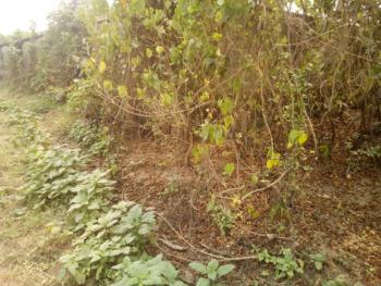 18 Plots on Approximately Acres of Land with C of O, Riverview Estate By Opic on Lagos Ibadan Expressway, Opic, Isheri North, Lagos, Mixed-use Land for Sale