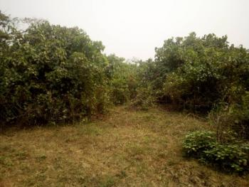 1900sqm of Land (4 Plots) with C of O, Riverview Estate Behinde Discovery Estate By Lasena Water Factory, Opic, Isheri North, Lagos, Mixed-use Land for Sale