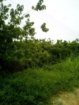 One and Half Plots of Land with State Allocation Letter, Riverview Estate Behind Faan Cooperative Estate, Opic, Isheri North, Lagos, Mixed-use Land for Sale