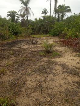 843,101 Acres ,facing Express at Lekki Ibeju Eleko Lakanpy Tropicana, at Lekki Ibeju Eleko Lacanpy Tropicana Area, Eleko, Ibeju Lekki, Lagos, Mixed-use Land for Sale