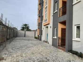 Brand New and Tastefully Finished 2 Bedroom Flat, Off Capitol Road, Agege, Lagos, Flat for Sale