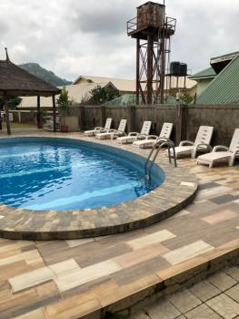 Excellent 2 Bedroom Flats Fully Furnished, Maitama Extension, Off River Benue Street, Maitama District, Abuja, Flat for Rent