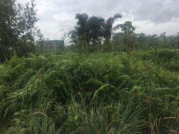 4 Plots of Land Together in a Fully Built Up Estate, Ikota Villa Estate, Ikota, Lekki, Lagos, Mixed-use Land for Sale