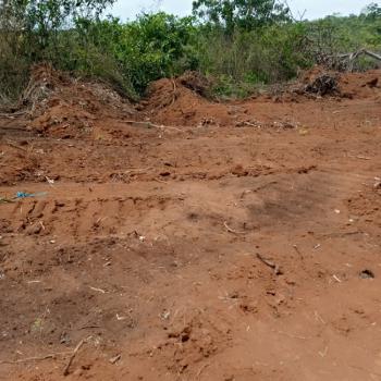 Cheapest Land in a Serene Location, Prosperity Garden Estate, Oba, Idemili, Anambra, Residential Land for Sale