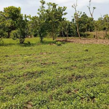 1.8 Hectares Land (school Plot), Katampe (main), Katampe, Abuja, Commercial Land for Sale