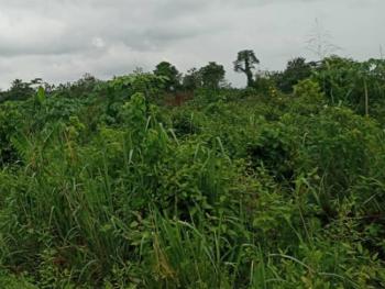 4 Plots of Mixed Use Land, Opebi, Ikeja, Lagos, Mixed-use Land for Sale