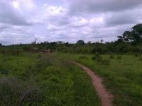 Acres of Land at Osunjela Area, Osogbo, Osunjela Area, Osogbo, Osogbo, Osun, Land for Sale
