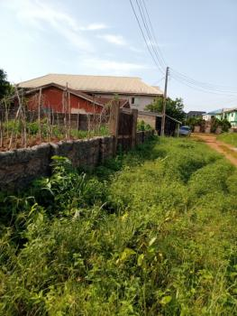 100ft By 200ft, Edo Street , Irhirhi Off Airport Road, Benin, Oredo, Edo, Mixed-use Land for Sale