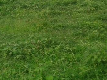 a Bare Land Measuring 678sqm, Opebi, Ikeja, Lagos, Mixed-use Land for Sale