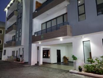 Brand New Luxury Mini Flat Apartment, Ikate, Ikate Elegushi, Lekki, Lagos, Mini Flat for Sale