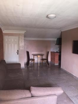 Luxury Mini Flat, Off Eko Street, Parkview Estate, Parkview, Ikoyi, Lagos, Mini Flat for Rent