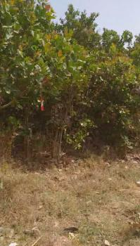 8 Hectares, Comprehensive Development, Kyami, Abuja, Mixed-use Land for Sale