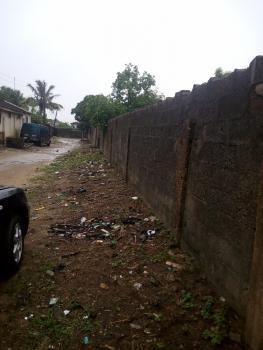 a Solid Plot of Land, Ibasa- Nla , Iyana Era Ijanikin, Okokomaiko, Ojo, Lagos, Mixed-use Land for Sale