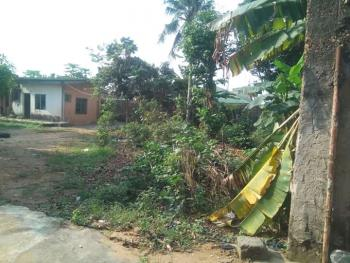 Commecial 2 Plot of Land Together Property Facing Major Road.c of O, Major Igando Road Express By Bus Stop, Igando, Ikotun, Lagos, Industrial Land for Sale