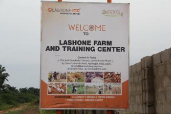 Registered Survey, Ibiyan, Yewa North, Ogun, Mixed-use Land for Sale