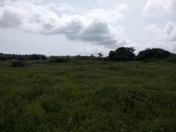 100 Acres of Prime Land, After Lekki Free Trade Zone By Osoroko 2nd Bus Stop., Osoroko, Ibeju Lekki, Lagos, Residential Land for Sale