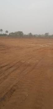 100% Dry Land in Built Up Area, Cherry Bay Estate Irete,owerri, Owerri West, Imo, Mixed-use Land for Sale