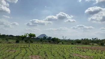 Private Estate Land Measuring 10 Hectares with C of O, Kyami, Abuja, Residential Land for Sale