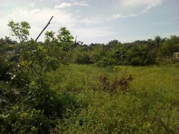 Gazetted Land, Sea View,  Okun-mopo, Behind Shoprite, Sangotedo, Ajah, Lagos, Mixed-use Land for Sale