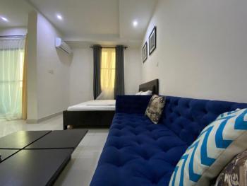 Excellent Studio Apartment with Best Amenities, Ikate Elegushi, Lekki, Lagos, Flat Short Let