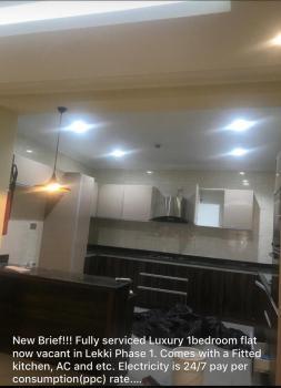 Brand New Luxurious 1 Bedroom Flat, Off Freedom Way., Lekki Phase 1, Lekki, Lagos, Mini Flat for Rent
