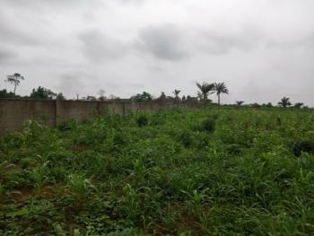 Land Area: 1.4869 Hectares (14,869 Square Metres), Odogunyan, Ikorodu, Lagos, Industrial Land for Sale